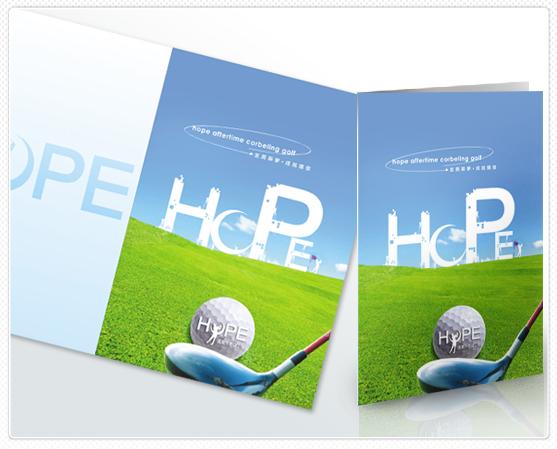 平面设计-品牌创意设计我们提供了cis设计